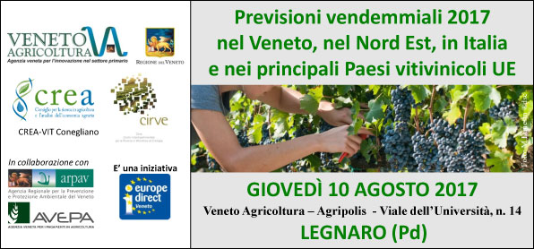 20170810-veneto-agricoltura-previsioni-vendemmiali.jpg