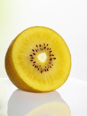 Jinyan nuova cultivar di kiwi a polpa gialla for Kiwi giallo piante acquisto