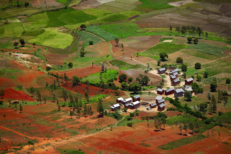 agricoltura-africa-madagascar-by-dudarev-mikhail-fotolia-750.jpg