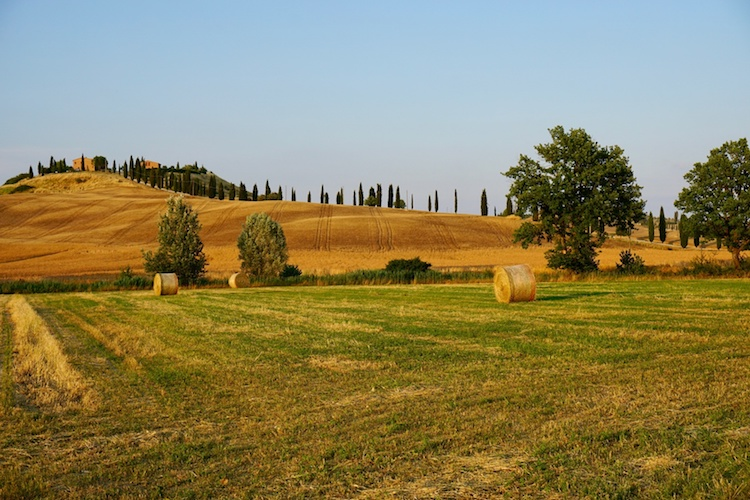 agricoltura-campagna-senese-campo-by-gianluca-fotolia-750