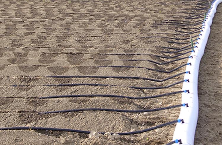Netafim irrigazione a goccia i vantaggi su patata e for Tubi per irrigazione a goccia prezzi
