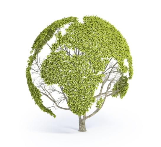 Risultati immagini per agricoltura e ambiente