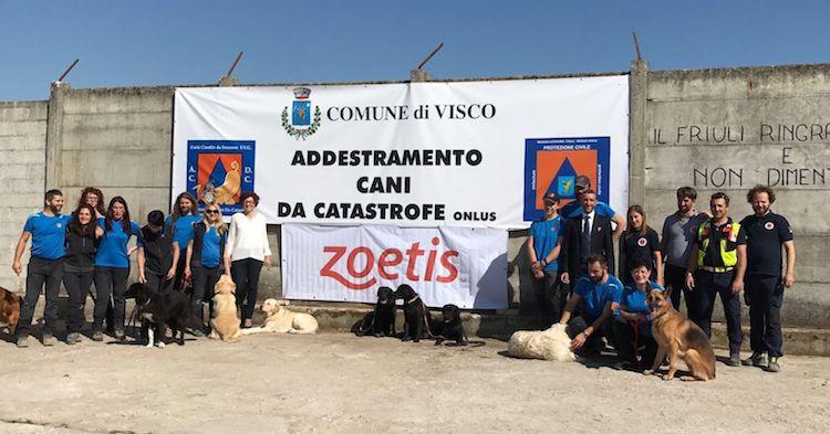 campo-addestramento-cani-da-catastrofe-visco-udine-fonte-zoetis.jpg