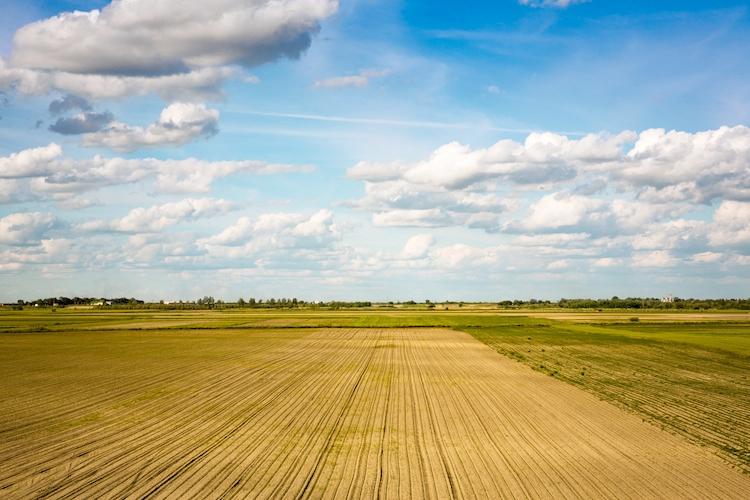 campo-agricolo-agricoltura-by-igor-mojzes-fotolia-750.jpg