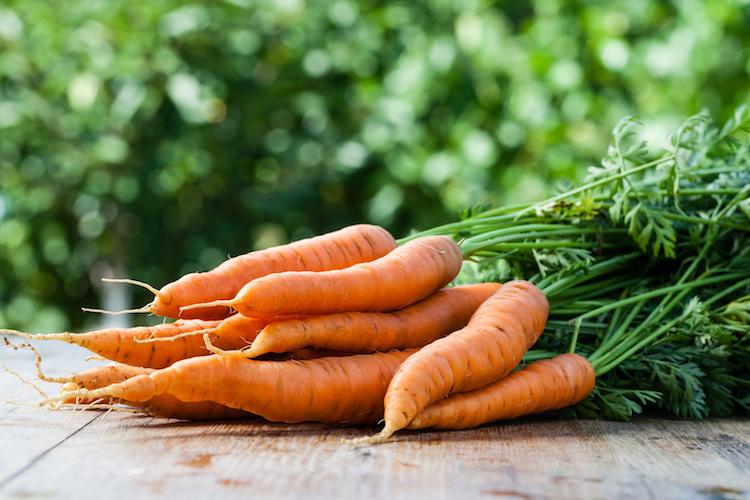 carote-by-gresei-fotolia-750.jpg