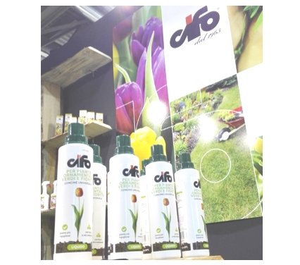 cifo-my-plant-2017.jpg