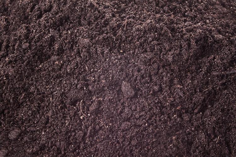 compost-terra-suolo-terriccio-by-jaroslavkettner-fotolia-750.jpg