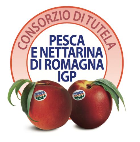 consorzio-tutela-pesca-nettarina-di-romagna-igp-fonte-cso.png