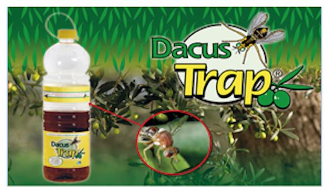 dacus-trap-fonte-lea.png