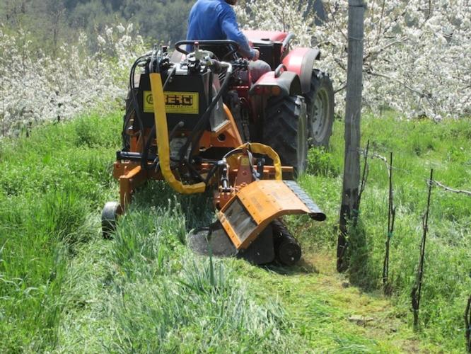 Berti macchine agricole pronta per enovitis in campo 2016 for Trincia berti usata