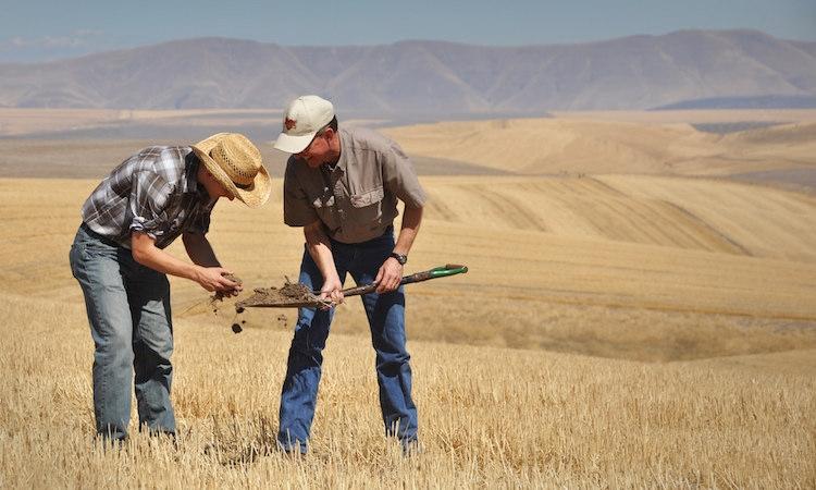 fertilizzanti-terra-suolo-by-flickr-cc-20-usda