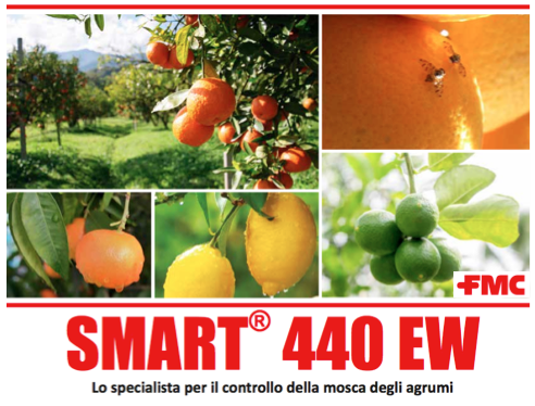 fmc-smart-440-apertura.png