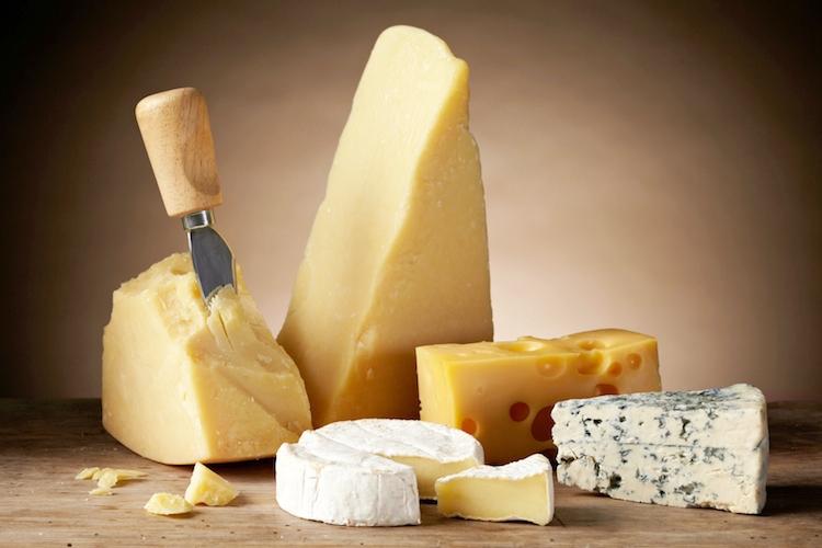 formaggi-lattiero-caseari-latticini-by-mara-zemgaliete-fotolia-750