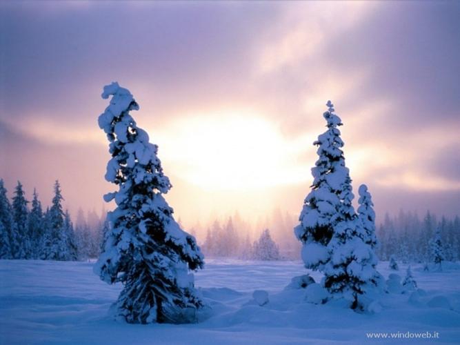 foto_inverno_21.jpg