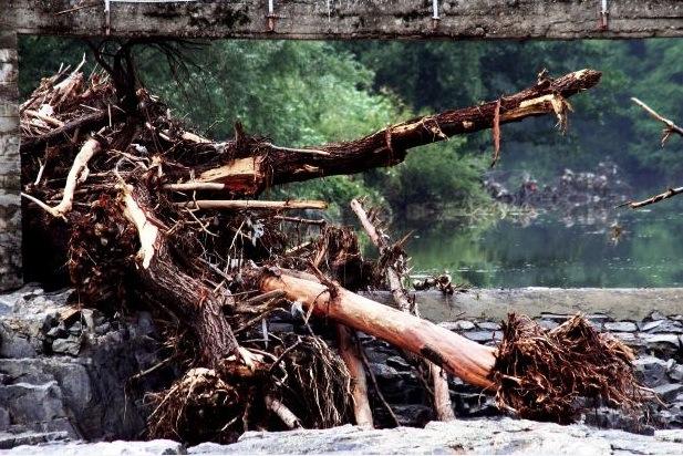 frana-alluvione-floodcn-7712-morguefile-clarita.jpg