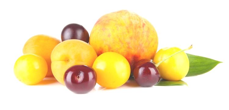 Frutta estiva, le quotazioni sono sotto i costi di produzione - Plantgest news sulle varietà di piante