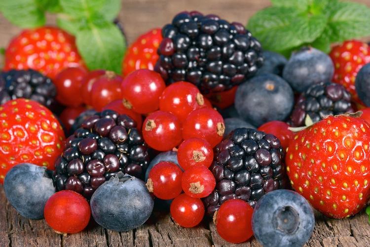 frutti-di-bosco-piccoli-frutti-ribes-mirtilli-fragole-more-by-merlin7125-fotolia-750.jpeg