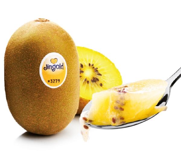 kiwi-giallo-fonte-jingold.jpg