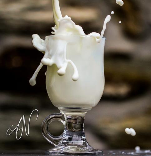 lattesplash-axel-naud