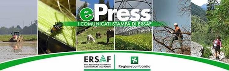 life-helpsoil-agricoltura-conservativa-epress-ersaf-regione-lombardia-fonte-ersaf.jpg