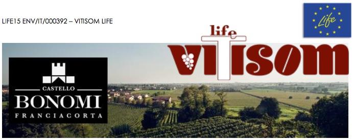 life-vitisom-20170519.jpg