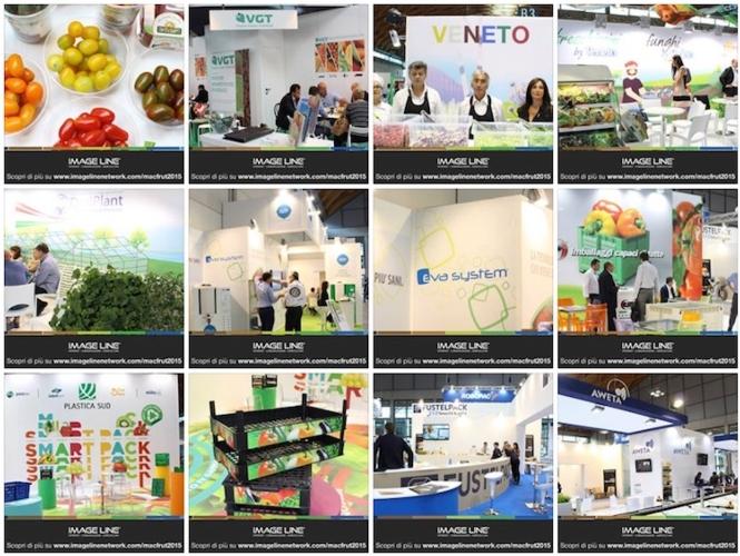 macfrut-collage-foto-gallery-facebook-2015.jpg