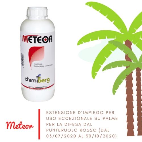 Meteor: estensione eccezionale su palme per punteruolo rosso