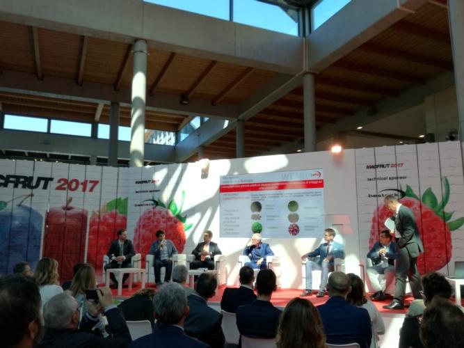 new-retail-solution-macfrut-2017-fonte-lorenzo-pelliconi-agronotizie.jpg