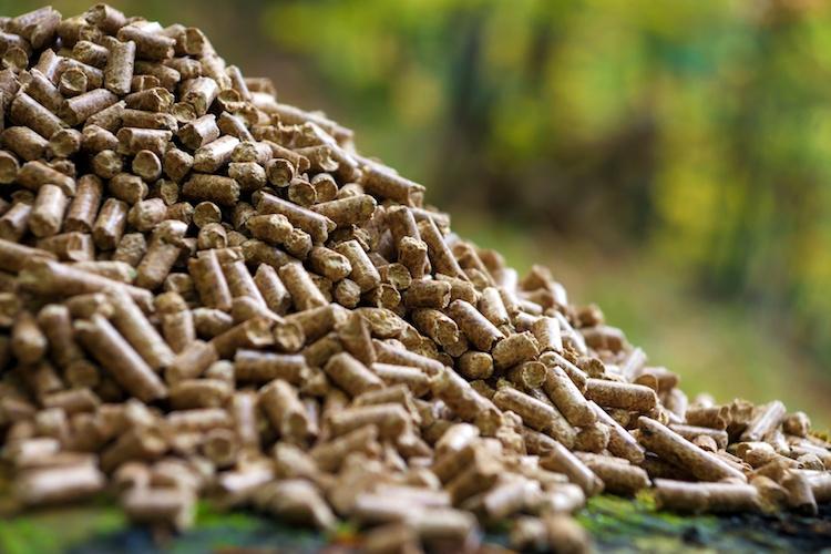 pellet-bioenergie-fonti-rinnovabili-by-dani-vincek-fotolia-750.jpeg
