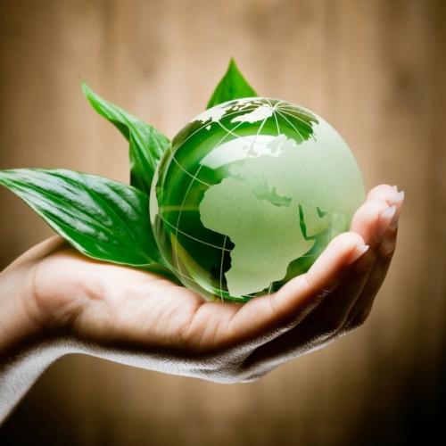 Caldaie policombustibili a biomassa riscaldare casa con for Caldaie di ultima generazione prezzi