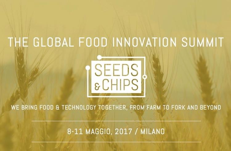 seeds-chips-2017.jpg