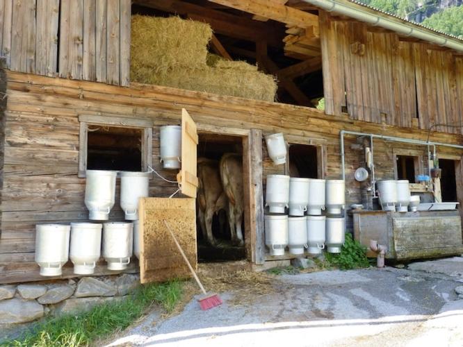Niente imu per terreni agricoli e fabbricati rurali for Imu per prima casa