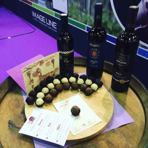 wine2wine-vino-divin-cioccolato-quaderno-di-campagna-1-bottiglie-cioccolatini.jpg