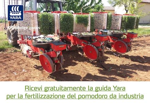 yara-pomodoro-industria-apertura.jpg