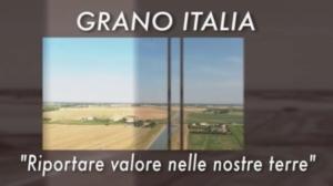 20170719-grano-italia