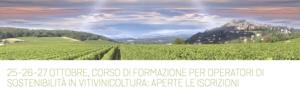 20171025-viva-sostenibilita-vitivinicoltura