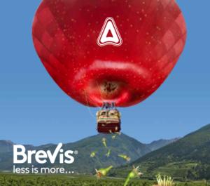 adama-brevis-less-more