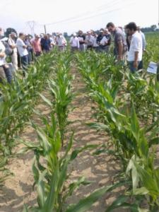 agricola2000-giornata-in-campo