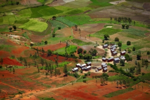 agricoltura-africa-madagascar-by-dudarev-mikhail-fotolia-750