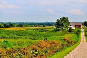 agricoltura-campagna-strada-casolare-byflickrcc20-singhmv_brainedge-390