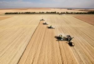 agricoltura-lavoro-agricolo-campo-grano-raccolto-trattori-macchine-agricole-tyler-olson-fotolia-750