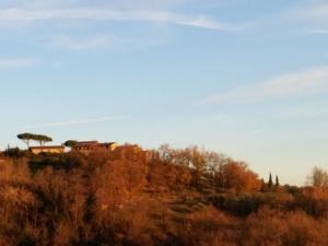 agritursimo-paesaggio-toscana-by-matteo-giusti-agronotizie