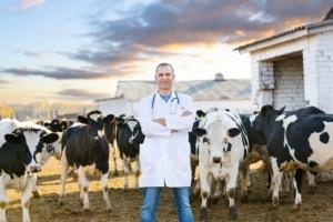 allevatore-allevamento-vacche-by-eugene-chernetsov-fotolia-750
