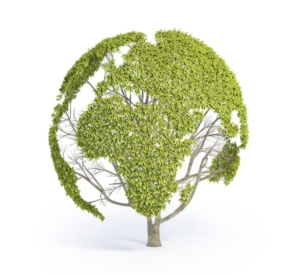 ambiente-sostenibilita-energie-ecologia-by-mopic-fotolia-750