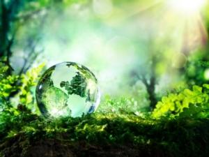 Rinnovabili in agricoltura: il nuovo Decreto Biometano e gli obiettivi 2020