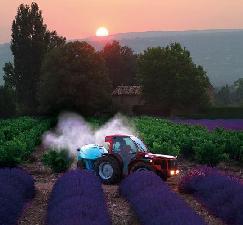 antonio-carraro-cabina-protector-provenza-trattore