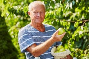 Puglia, Coldiretti spinge sull'agricoltura sociale - Plantgest news sulle varietà di piante