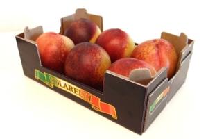 apofruit-frutti-solarelli