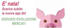 app-prezzi-suini-font-ersaf-lombardia