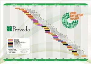 Pesche, i Vivai Piante Battistini rinnovano il catalogo - Plantgest news sulle varietà di piante